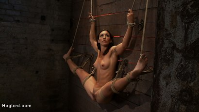 Photo number 1 from Gymnast, fitness model has her flexibility put to the test.<br>Made to cum until she is a sweaty pig shot for Hogtied on Kink.com. Featuring Wenona in hardcore BDSM & Fetish porn.