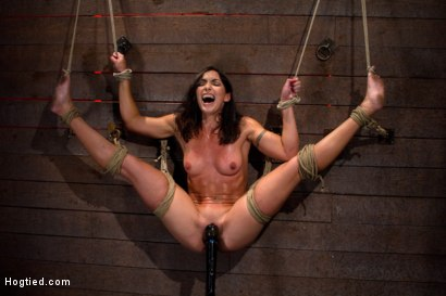 Photo number 15 from Gymnast, fitness model has her flexibility put to the test.<br>Made to cum until she is a sweaty pig shot for Hogtied on Kink.com. Featuring Wenona in hardcore BDSM & Fetish porn.