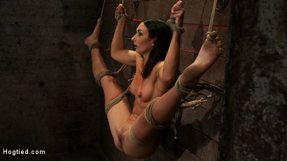 Photo number 4 from Gymnast, fitness model has her flexibility put to the test.<br>Made to cum until she is a sweaty pig shot for Hogtied on Kink.com. Featuring Wenona in hardcore BDSM & Fetish porn.