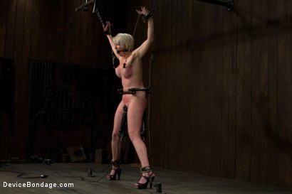 Photo number 12 from Tip Tap shot for Device Bondage on Kink.com. Featuring Devon Taylor in hardcore BDSM & Fetish porn.