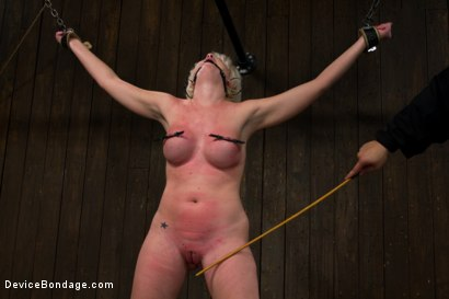 Photo number 9 from Tip Tap shot for Device Bondage on Kink.com. Featuring Devon Taylor in hardcore BDSM & Fetish porn.
