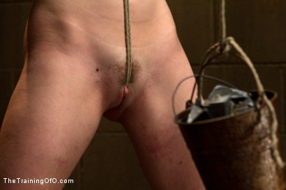 Photo number 1 from Lily LaBeau Day 2 shot for The Training Of O on Kink.com. Featuring Lily LaBeau and Wolf Hudson in hardcore BDSM & Fetish porn.