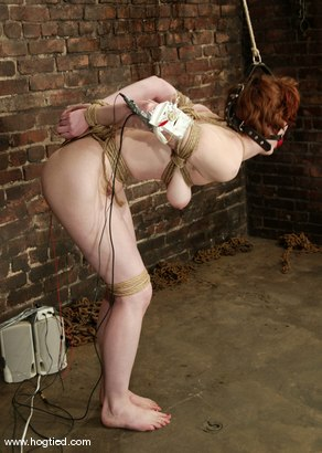 Photo number 12 from Rose shot for Hogtied on Kink.com. Featuring Rose in hardcore BDSM & Fetish porn.