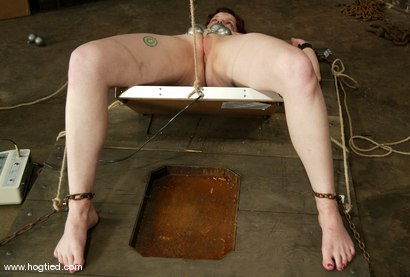 Photo number 6 from Rose shot for Hogtied on Kink.com. Featuring Rose in hardcore BDSM & Fetish porn.