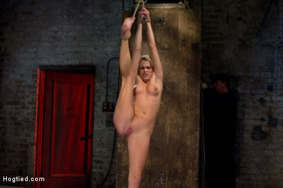 Photo number 14 from Southern Belle in her first hardcore bondage experience<br>Abused, made to cum, and wrist suspended. shot for Hogtied on Kink.com. Featuring Aiden Aspen in hardcore BDSM & Fetish porn.