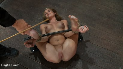 Photo number 3 from Tiny 5'3 100lbs Southern Peach is so cute, innocent<br>We rip orgasm after orgasm out of this co-ed shot for Hogtied on Kink.com. Featuring Aiden Aspen in hardcore BDSM & Fetish porn.