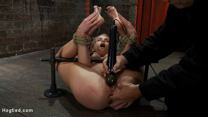 Photo number 7 from Tiny 5'3 100lbs Southern Peach is so cute, innocent<br>We rip orgasm after orgasm out of this co-ed shot for Hogtied on Kink.com. Featuring Aiden Aspen in hardcore BDSM & Fetish porn.