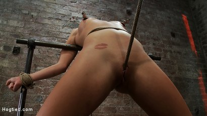 Photo number 12 from Tiny Southern Belle pushed to her limits, back arched, made to cum hard  Cruelest crotch rope ever shot for Hogtied on Kink.com. Featuring Aiden Aspen in hardcore BDSM & Fetish porn.