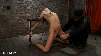 Photo number 6 from Tiny Southern Belle pushed to her limits, back arched, made to cum hard  Cruelest crotch rope ever shot for Hogtied on Kink.com. Featuring Aiden Aspen in hardcore BDSM & Fetish porn.