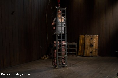 Photo number 13 from Today she is a toy, a mere item to exploit and indulge with dark intentions. shot for Device Bondage on Kink.com. Featuring Sloane Soleil in hardcore BDSM & Fetish porn.
