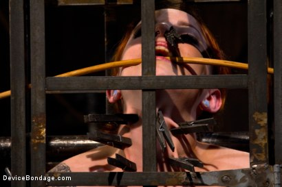 Photo number 15 from Today she is a toy, a mere item to exploit and indulge with dark intentions. shot for Device Bondage on Kink.com. Featuring Sloane Soleil in hardcore BDSM & Fetish porn.