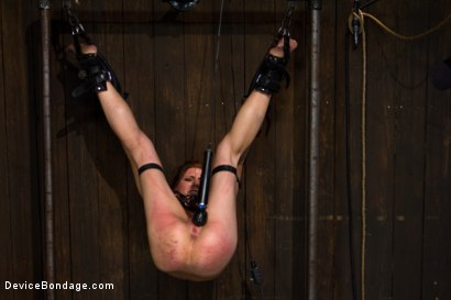 Photo number 9 from Through the ringer and hung to dry shot for Device Bondage on Kink.com. Featuring Delilah Knight in hardcore BDSM & Fetish porn.