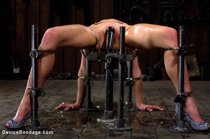 Photo number 14 from Through the ringer and hung to dry shot for Device Bondage on Kink.com. Featuring Delilah Knight in hardcore BDSM & Fetish porn.