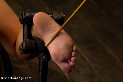 Photo number 7 from Pretty Pink Pain.  shot for Device Bondage on Kink.com. Featuring Tara Lynn Foxx in hardcore BDSM & Fetish porn.