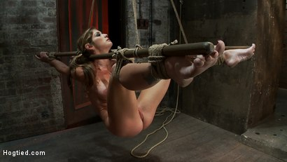 Photo number 12 from Hot MILF suffers the most painful bondage<br>Category 5 suspension made to squirt all over the place shot for Hogtied on Kink.com. Featuring Felony in hardcore BDSM & Fetish porn.