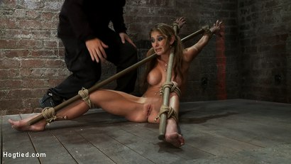 Photo number 1 from Hot MILF suffers the most painful bondage<br>Category 5 suspension made to squirt all over the place shot for Hogtied on Kink.com. Featuring Felony in hardcore BDSM & Fetish porn.