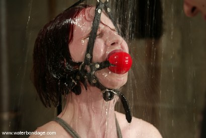 Photo number 1 from Claire Adams shot for Water Bondage on Kink.com. Featuring Claire Adams in hardcore BDSM & Fetish porn.