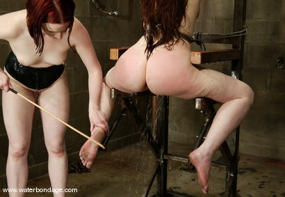 Photo number 7 from Billy Wild, Claire Adams and Babydoll shot for Water Bondage on Kink.com. Featuring Claire Adams, Babydoll and Billy Wild in hardcore BDSM & Fetish porn.