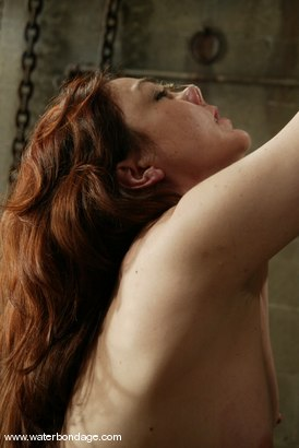 Photo number 4 from Billy Wild, Claire Adams and Babydoll shot for Water Bondage on Kink.com. Featuring Claire Adams, Babydoll and Billy Wild in hardcore BDSM & Fetish porn.