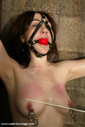 Photo number 13 from Billy Wild, Claire Adams and Babydoll shot for Water Bondage on Kink.com. Featuring Claire Adams, Babydoll and Billy Wild in hardcore BDSM & Fetish porn.