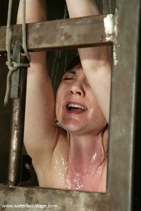 Photo number 14 from Billy Wild, Claire Adams and Babydoll shot for Water Bondage on Kink.com. Featuring Claire Adams, Babydoll and Billy Wild in hardcore BDSM & Fetish porn.