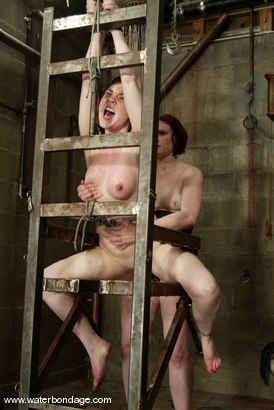 Photo number 3 from Billy Wild, Claire Adams and Babydoll shot for Water Bondage on Kink.com. Featuring Claire Adams, Babydoll and Billy Wild in hardcore BDSM & Fetish porn.