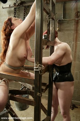 Photo number 5 from Billy Wild, Claire Adams and Babydoll shot for Water Bondage on Kink.com. Featuring Claire Adams, Babydoll and Billy Wild in hardcore BDSM & Fetish porn.