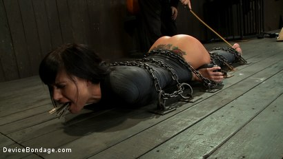 Photo number 12 from If you have a perfect ass & get mummified with your ass sticking up  You're going to get fucked shot for Device Bondage on Kink.com. Featuring Gia DiMarco and Maestro in hardcore BDSM & Fetish porn.