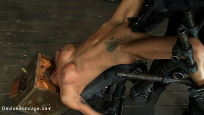 Photo number 11 from Hot skinny MILF with big tits, is bound in a custom metal device. <br>Brutally fucked, and zippered. shot for Device Bondage on Kink.com. Featuring Gia DiMarco and Maestro in hardcore BDSM & Fetish porn.