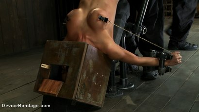 Photo number 8 from Hot skinny MILF with big tits, is bound in a custom metal device. <br>Brutally fucked, and zippered. shot for Device Bondage on Kink.com. Featuring Gia DiMarco and Maestro in hardcore BDSM & Fetish porn.