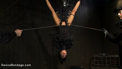 Photo number 10 from Bound in a straightjacket, inverted suspended<br>Fucked by a machine, made to suck cock & zippered. shot for Device Bondage on Kink.com. Featuring Gia DiMarco and Maestro in hardcore BDSM & Fetish porn.