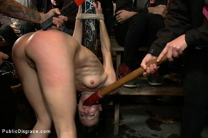 Photo number 3 from Total Awesomeness shot for Public Disgrace on Kink.com. Featuring Elise Graves, Tommy Pistol and Princess Donna Dolore in hardcore BDSM & Fetish porn.