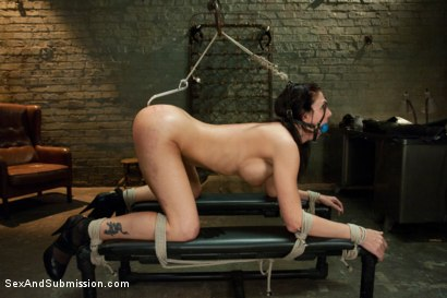 Photo number 7 from Revenge on Roxanne shot for Sex And Submission on Kink.com. Featuring Mark Davis and Roxanne Hall in hardcore BDSM & Fetish porn.