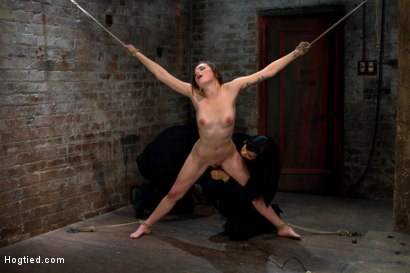 Photo number 13 from Super cute next door gets bound by perverted couple<br>Stripped, flogged, fingered and made to cum!  shot for Hogtied on Kink.com. Featuring Missy Minks and Isis Love in hardcore BDSM & Fetish porn.