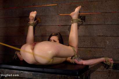 Photo number 14 from Some girls seem too cute for porn<br>But not so cute that Isis Love won't dick you down like a slut shot for Hogtied on Kink.com. Featuring Missy Minks and Isis Love in hardcore BDSM & Fetish porn.