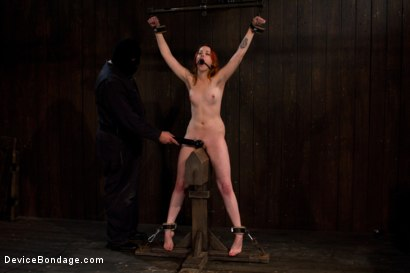 Photo number 8 from Pussy Punishment shot for Device Bondage on Kink.com. Featuring Sloane Soleil in hardcore BDSM & Fetish porn.