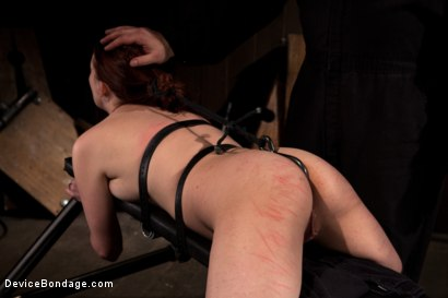 Photo number 4 from Sarge's Little Slut shot for Device Bondage on Kink.com. Featuring Lilla Katt in hardcore BDSM & Fetish porn.