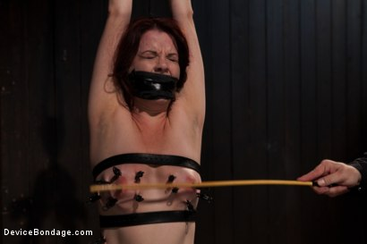 Photo number 7 from Sarge's Little Slut shot for Device Bondage on Kink.com. Featuring Lilla Katt in hardcore BDSM & Fetish porn.
