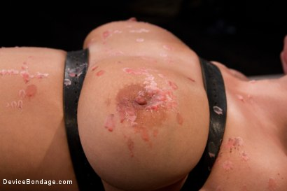 Photo number 1 from This bitch is bangin'. shot for Device Bondage on Kink.com. Featuring Haley Cummings in hardcore BDSM & Fetish porn.