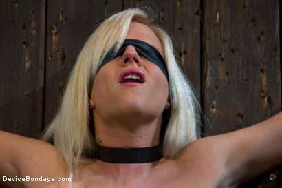 Photo number 15 from This bitch is bangin'. shot for Device Bondage on Kink.com. Featuring Haley Cummings in hardcore BDSM & Fetish porn.