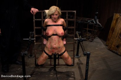 Photo number 3 from This bitch is bangin'. shot for Device Bondage on Kink.com. Featuring Haley Cummings in hardcore BDSM & Fetish porn.