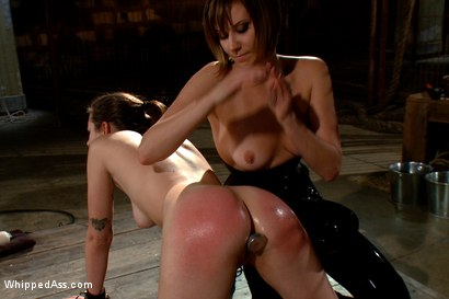 Photo number 8 from Whipped Ass LIVE in December shot for Whipped Ass on Kink.com. Featuring Kristina Rose, Maitresse Madeline Marlowe  and Missy Minks in hardcore BDSM & Fetish porn.