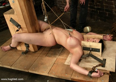 Photo number 2 from Bella shot for Hogtied on Kink.com. Featuring Bella in hardcore BDSM & Fetish porn.