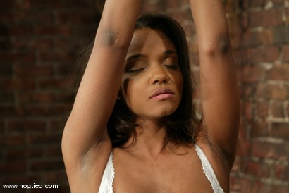 Photo number 15 from Sinnamon Love and Harry the Goblin shot for Hogtied on Kink.com. Featuring Sinnamon Love and Harry the Goblin in hardcore BDSM & Fetish porn.