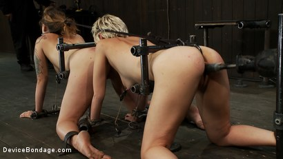 Photo number 14 from The Human Centipede AKA The Double Doggy shot for Device Bondage on Kink.com. Featuring Chloe Camilla and Payton Bell in hardcore BDSM & Fetish porn.
