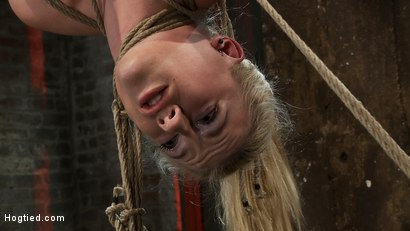 """Photo number 11 from 19yr old blond with huge """"F"""" size breasts  is made to cum over & over. Suffers horrific bondage! shot for Hogtied on Kink.com. Featuring Haley Cummings in hardcore BDSM & Fetish porn."""