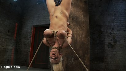 """Photo number 4 from 19yr old blond with huge """"F"""" size breasts  is made to cum over & over. Suffers horrific bondage! shot for Hogtied on Kink.com. Featuring Haley Cummings in hardcore BDSM & Fetish porn."""