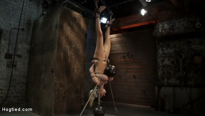 """Photo number 10 from 19yr old blond with huge """"F"""" size breasts  is made to cum over & over. Suffers horrific bondage! shot for Hogtied on Kink.com. Featuring Haley Cummings in hardcore BDSM & Fetish porn."""