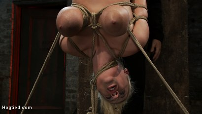 "Photo number 12 from 19yr old blond with huge ""F"" size breasts<br>is made to cum over & over.  Suffers horrific bondage! shot for Hogtied on Kink.com. Featuring Haley Cummings in hardcore BDSM & Fetish porn."