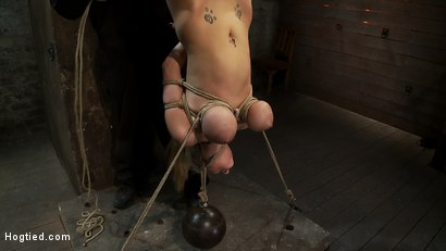 "Photo number 14 from 19yr old blond with huge ""F"" size breasts<br>is made to cum over & over.  Suffers horrific bondage! shot for Hogtied on Kink.com. Featuring Haley Cummings in hardcore BDSM & Fetish porn."